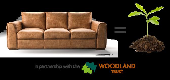 Sofology Plan Tree scheme with Woodland Trust