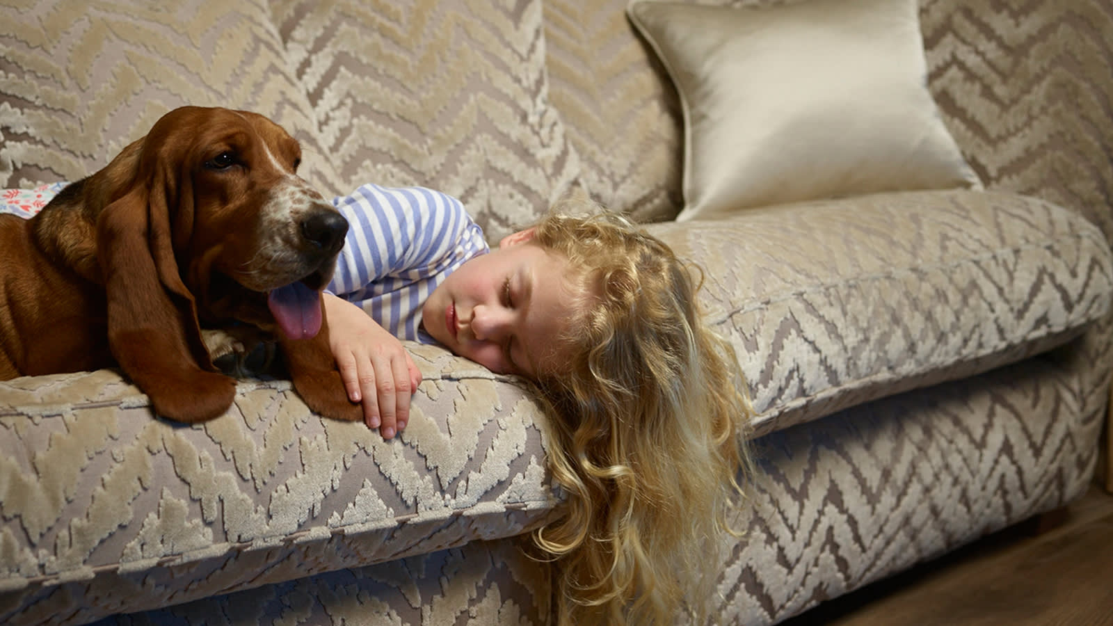 Dog and young girl on fabric sofa