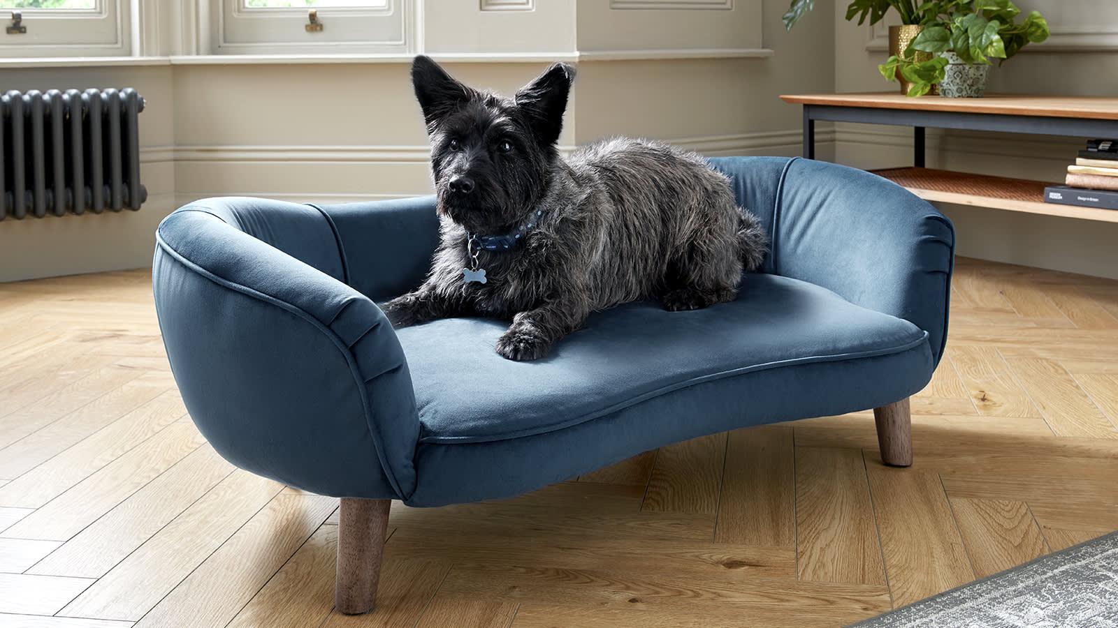 Dog Sofas Sofology