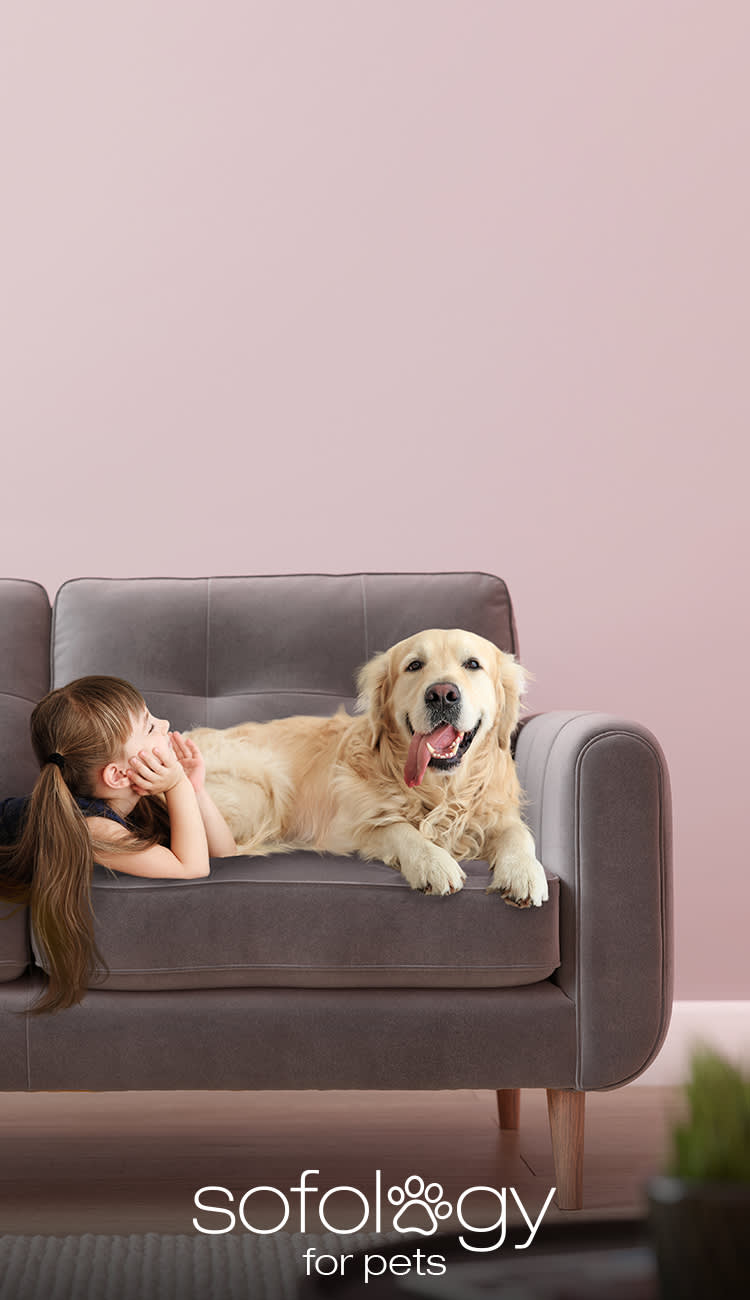 Sofology Pet Friendly Fabric Sofa