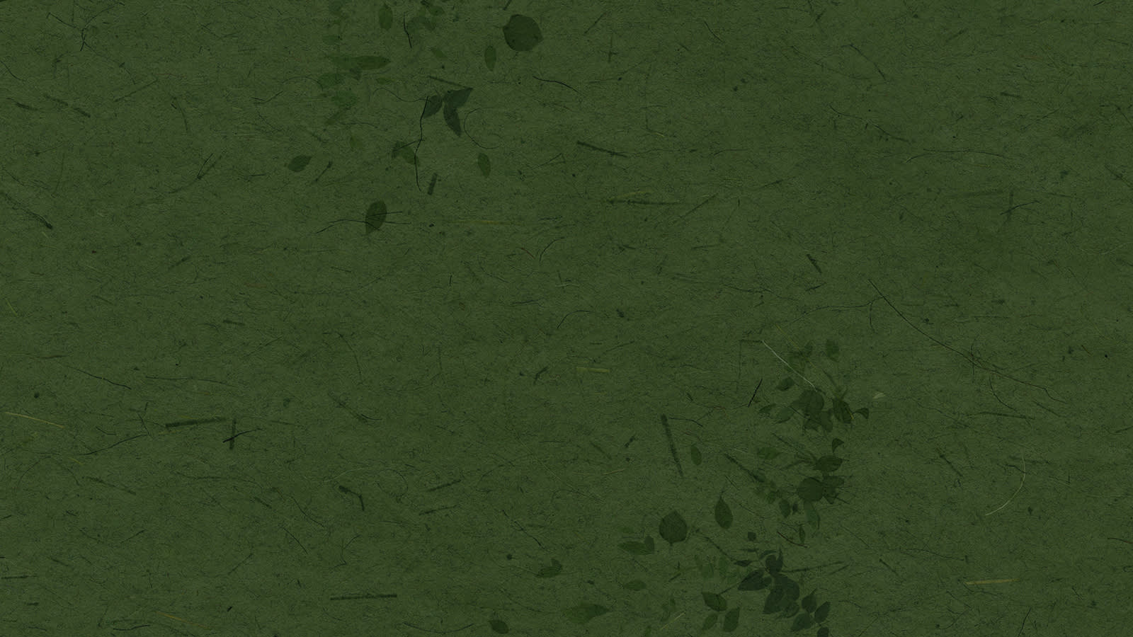 Green paper background with leaves