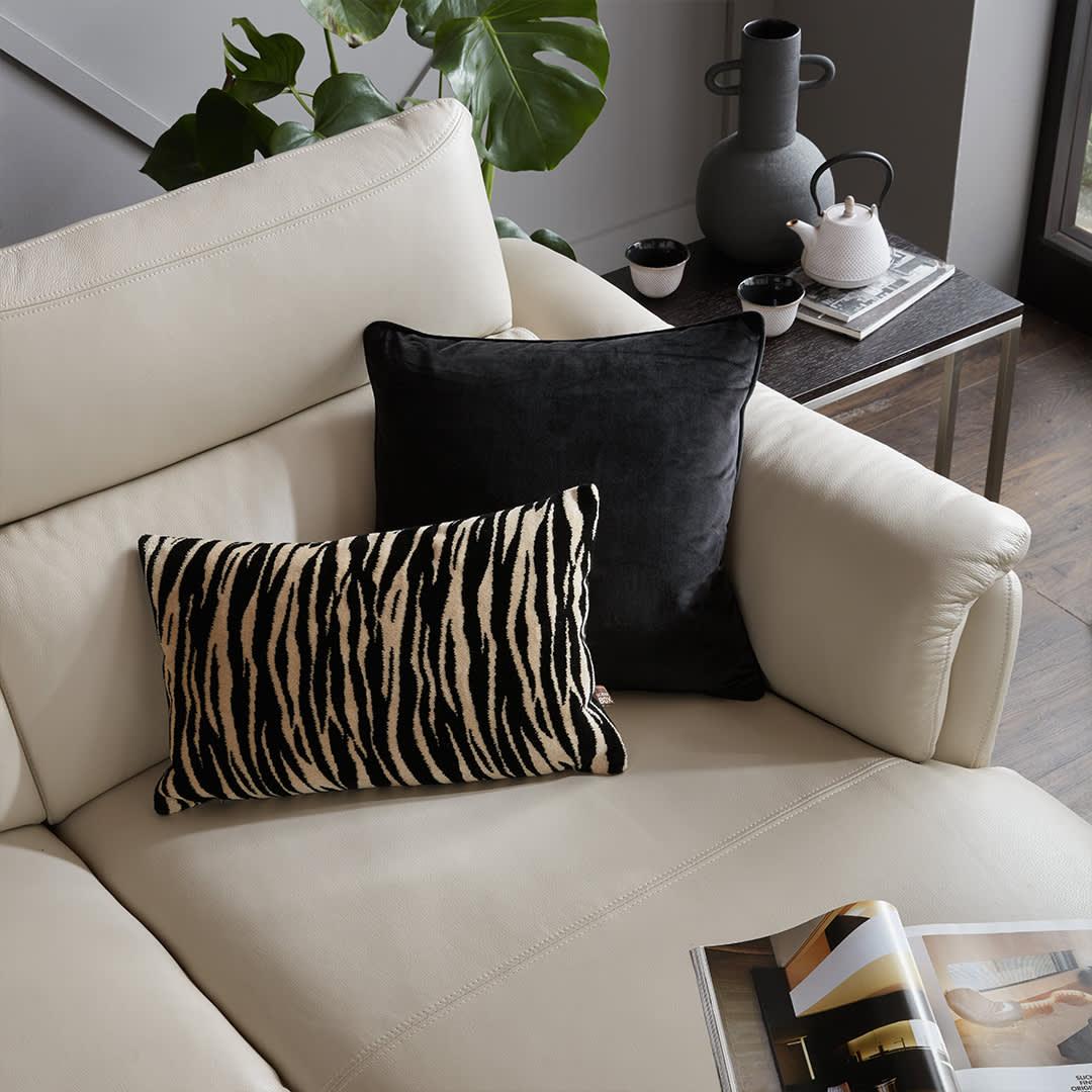 Zizi Bolster and Bellini Black Scatter Cushion
